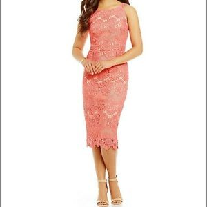 Antonio Melani Olympia Lace Sheath Dress 6